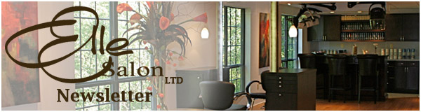 Elle Salon Ltd. Welcome Banner